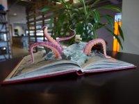 AR octopus