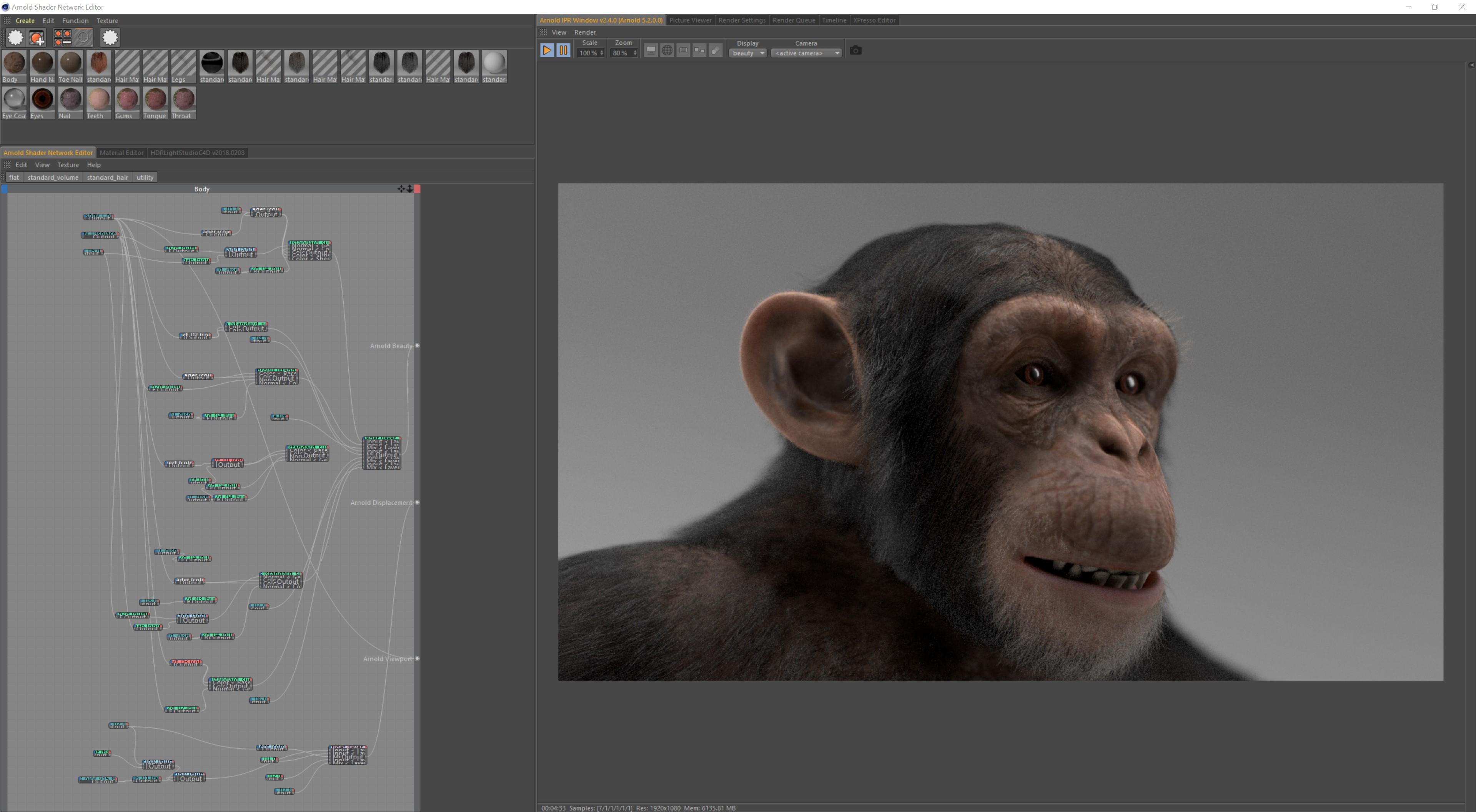Realistic CGI Chimpanzee model, 3D animal animation studio
