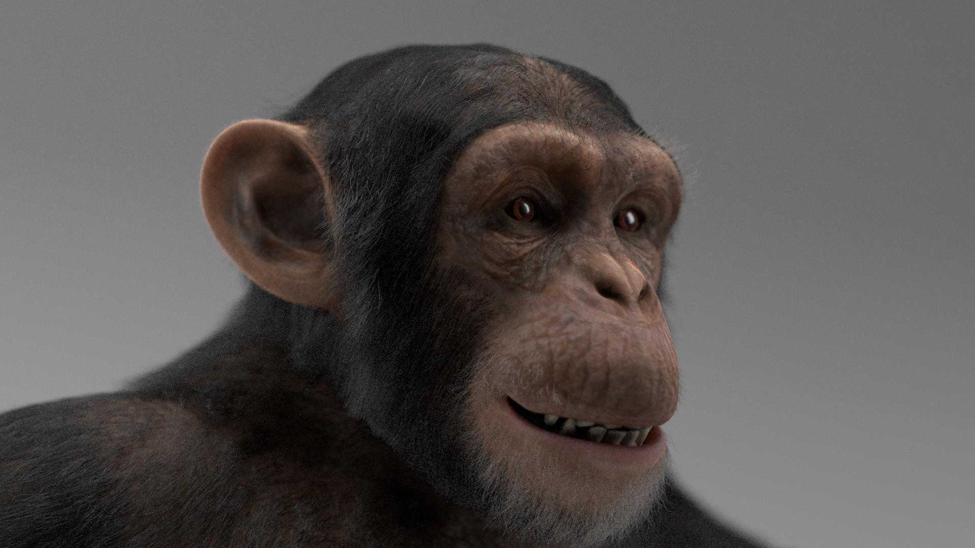 2D Animation, 3D Visualization, Motion Design, Live Action & VFX